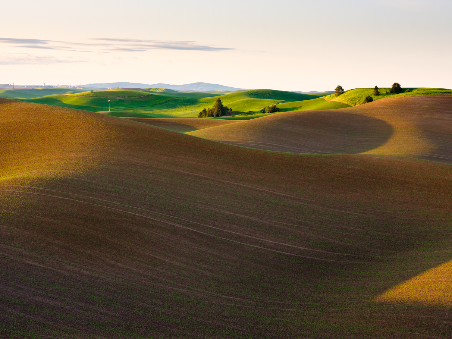 The Palouse Effect