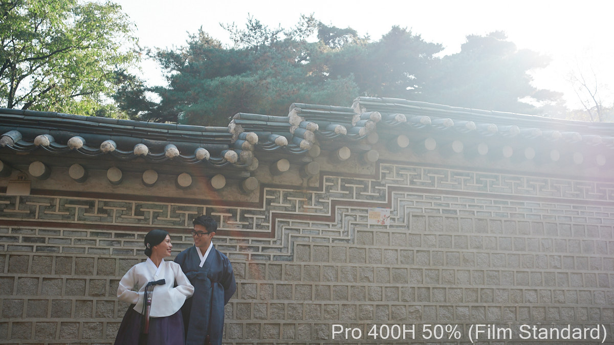 RNI All Films 5 Capture One - Pro 400H